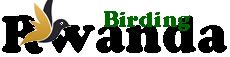 Rwanda Birding Guide